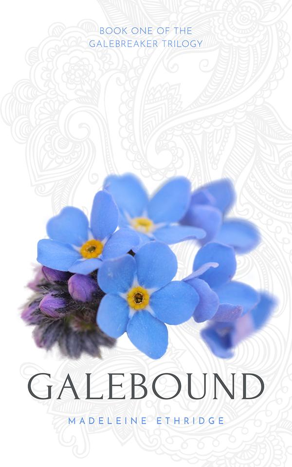 Galebound cover mockup